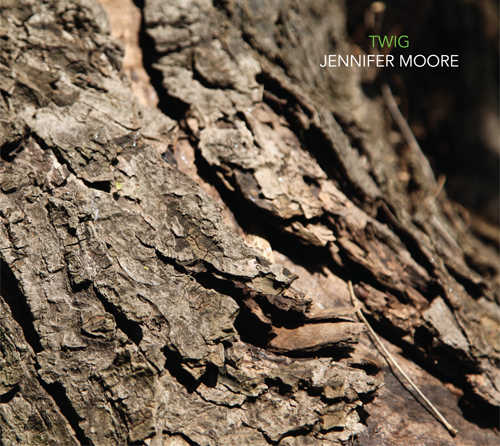 twig_front_cover